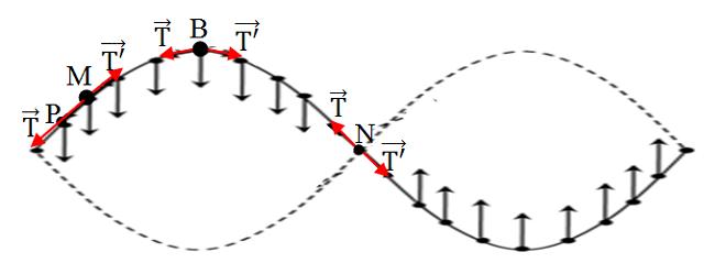 một sợi dây đàn hồi căng ngang đang có sóng dừng ổn định